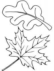 Раскраска листья деревьев | Simpel tekenen/Easy drawing ...