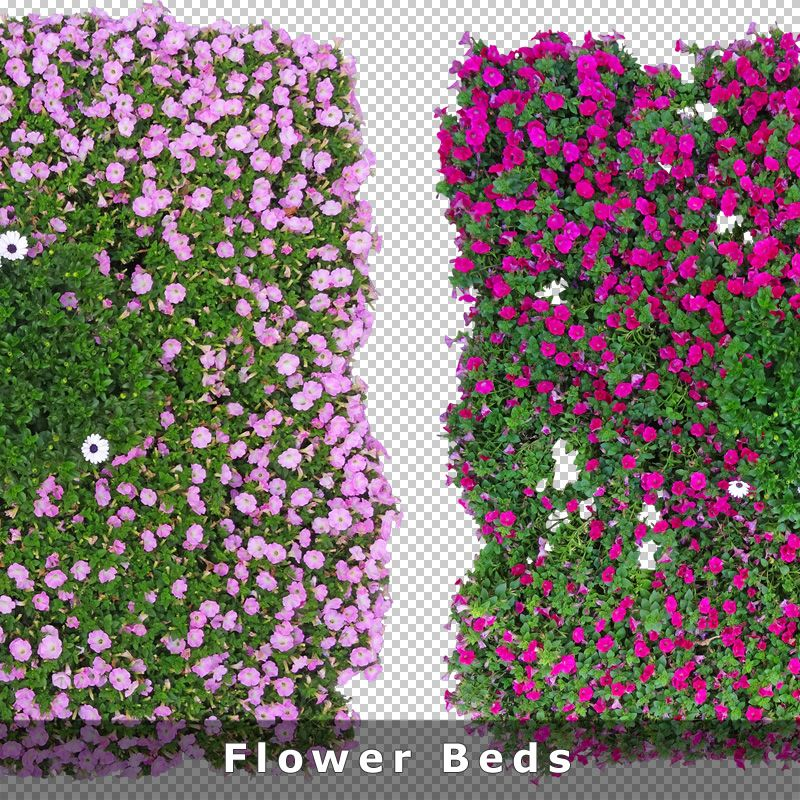 Top View Flowers Cutout Plan View Images Png For Garden And Photoshop Landscape Flower Png Images Top View