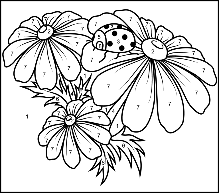 Camomile - Printable Color by Number Page | MATES | Pinterest ...
