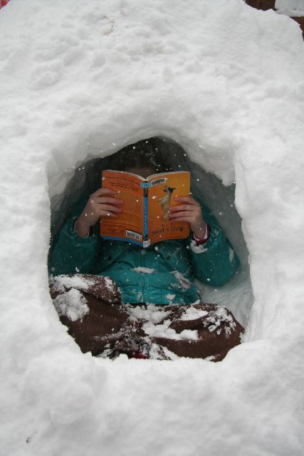 Image result for snowed in reading