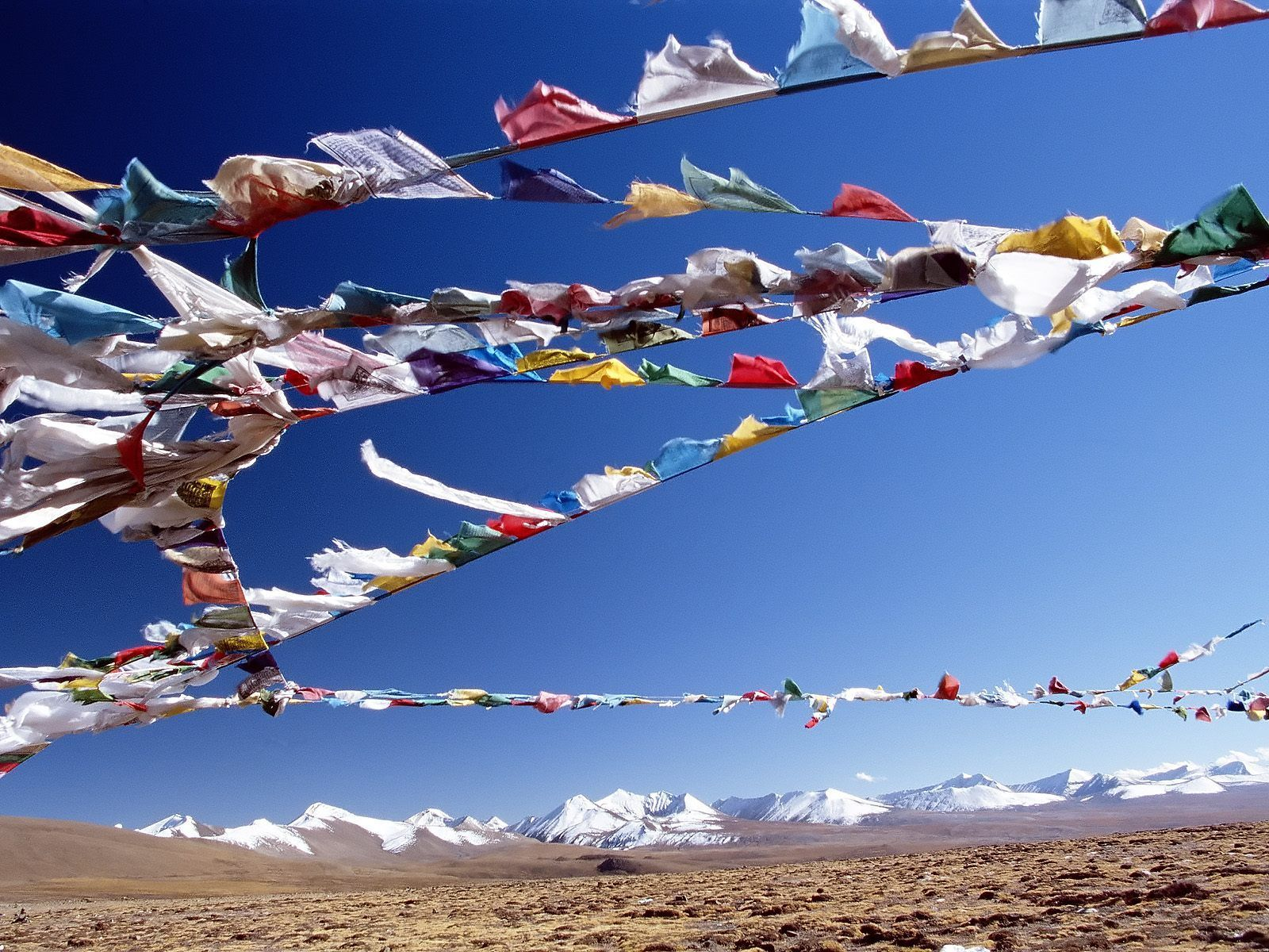 Tibetian Prayer Flags, where the values and ideas that the flags represent are both beautiful and as inspiring as a collection of old candles in any church.