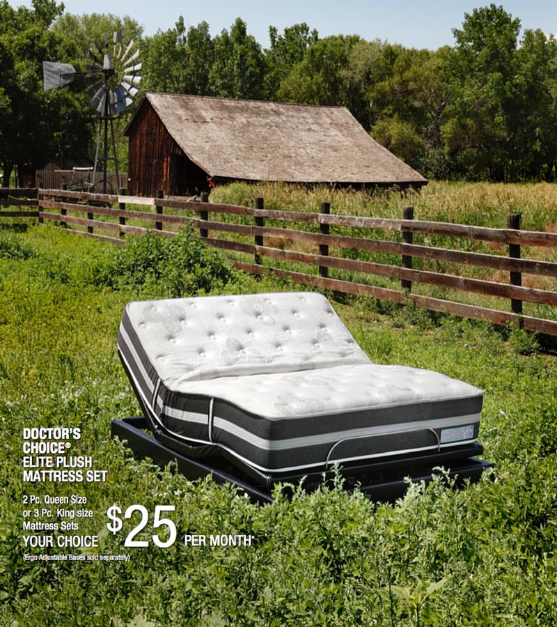 introducing the choice elite plush mattress set from denver mattress ergo base sold separately - Denver Mattress