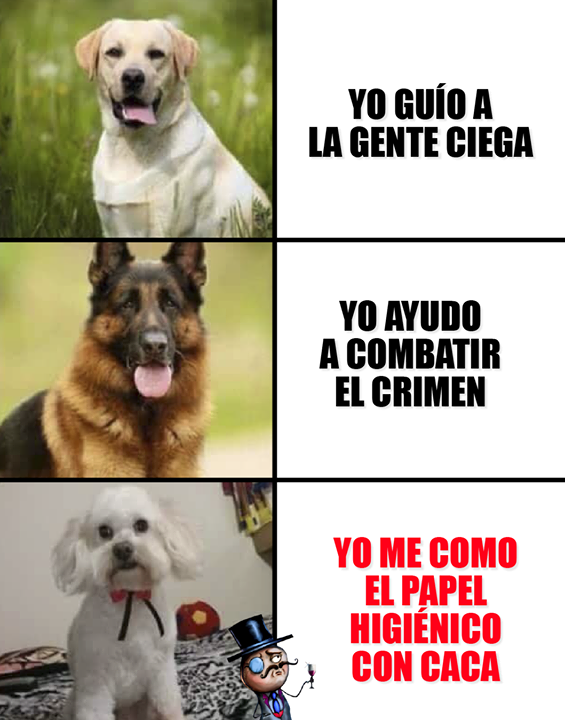 Jajajajajajajajajajajaja Chistes Graciosos Buenos Memes Graciosos Memes Divertidos