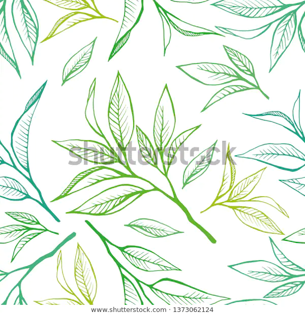 Floral Seamless Pattern Tea Leaves Hand Stock Vector Royalty Free 1373062124 Seamless Patterns Leaf Background Stock Vector