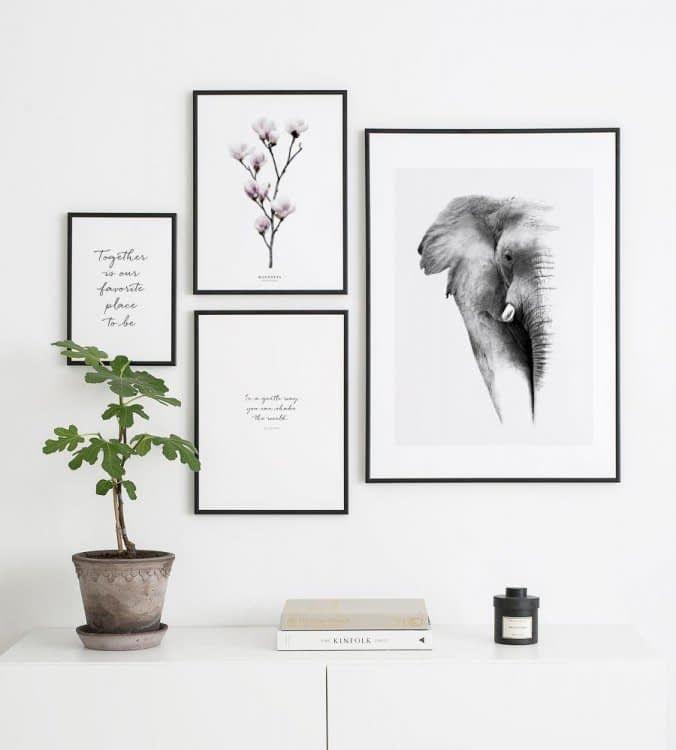 Photo of Inspiration für deine Bilderwand – Posterstore.de