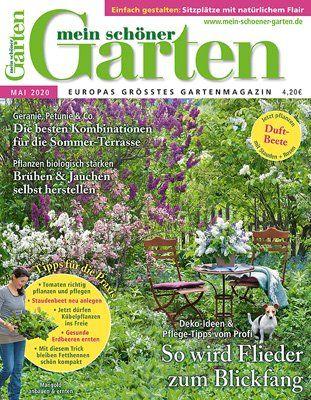 Gartengestaltung Mit Mauern In 2020 Pflanzen Bambushecke Garten