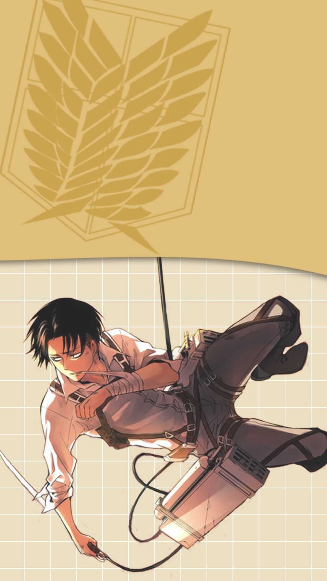 Wallpapers And Lockscreen Levi Ackerman Shingeki No Kyojin If You Attack On Titan Levi Attack On Titan Anime Attack On Titan Meme