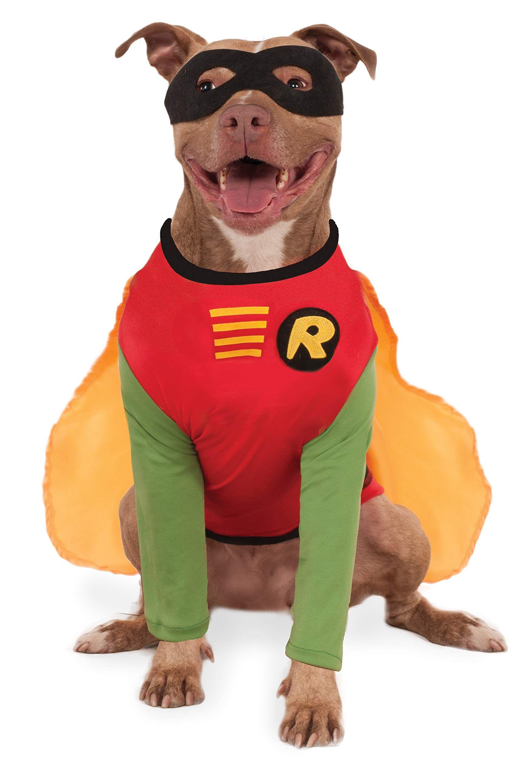 Pin On Halloween Pets