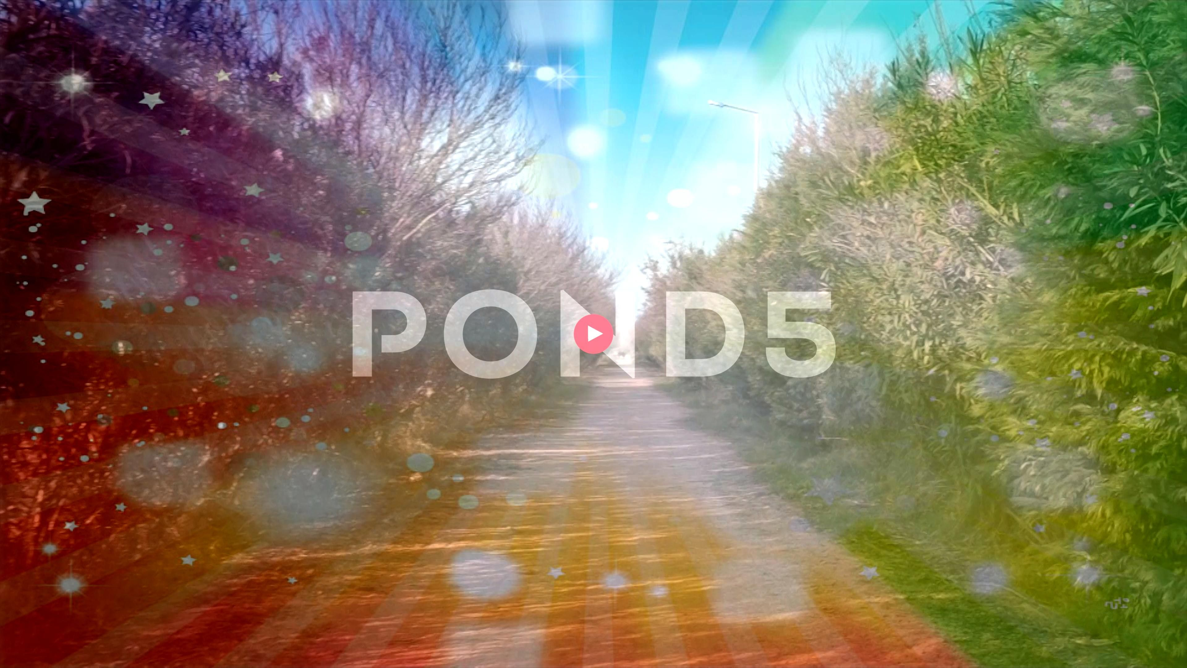 nature land road in summer time Beautiful trees and plants and long way Stock Footage roadsummertimeEmptyEmpty nature land road in summer time Beautiful trees and plants...