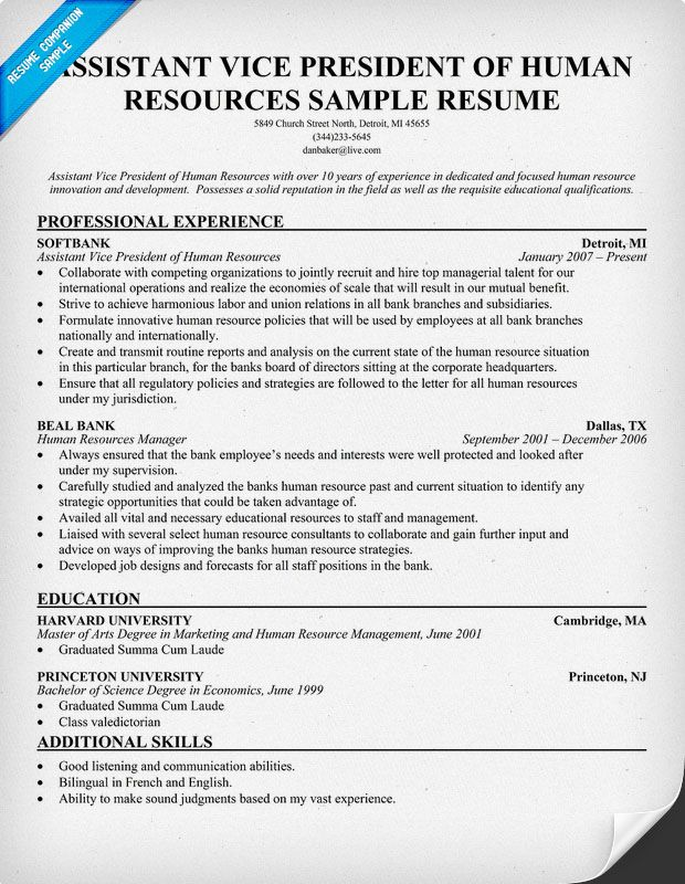 Assistant Vice President Of Human Resources (resumecompanion - hr benefits specialist sample resume