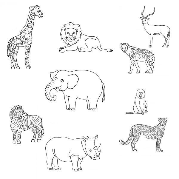 Coloriage Animaux Sauvages De Savane Et Foret Coloriage Animaux Animaux Afrique Animaux De La Savane