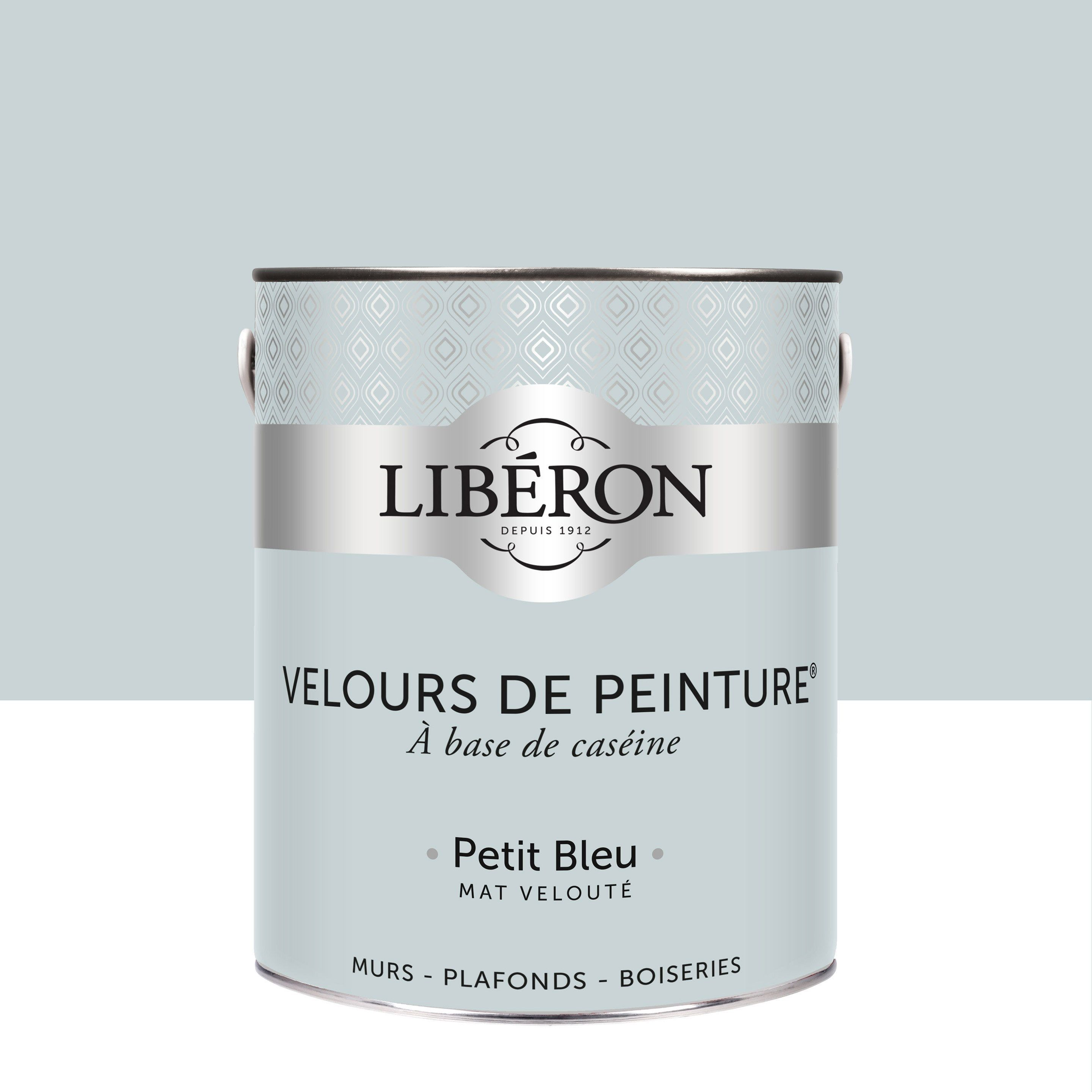 Peinture Multisupport Liberon Petit Bleu Velours 2 5 L In 2020 With Images