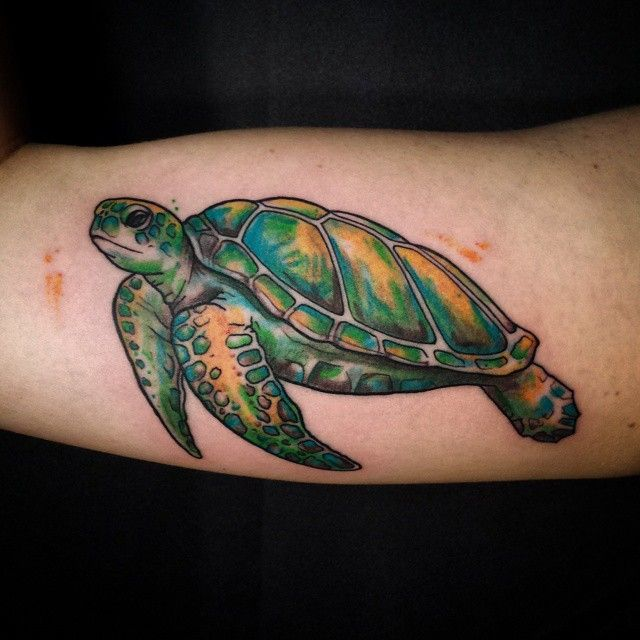 50 Tribal Sea Turtle Tattoo Designs and Meanings | Turtles ...