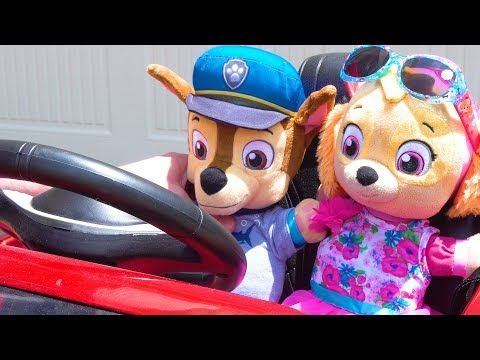 Best Learning Videos for Kids Paw Patrol Baby Chase & Skye
