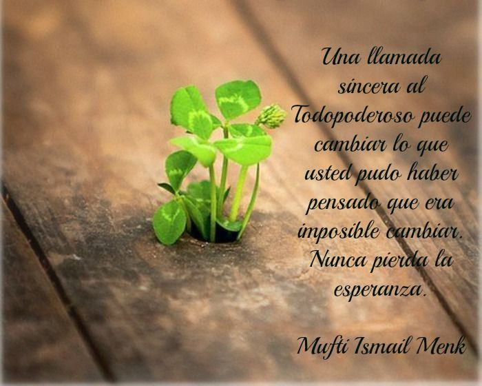 Islam Allah Esperanza Citas Frases Menk Islam Nouman