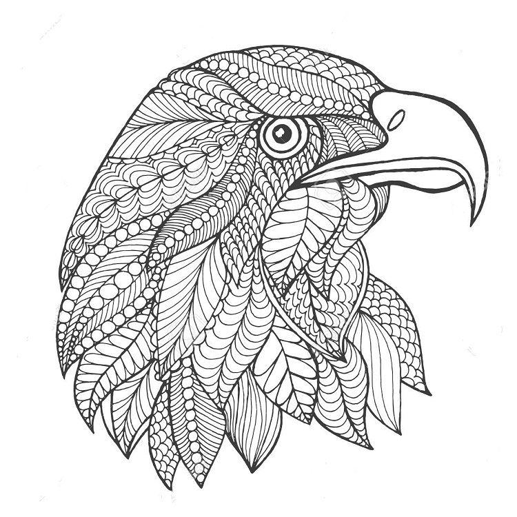 Eagle Zentangle Coloring Pages Mandala Coloring Pages Bird Coloring Pages Bird Doodle