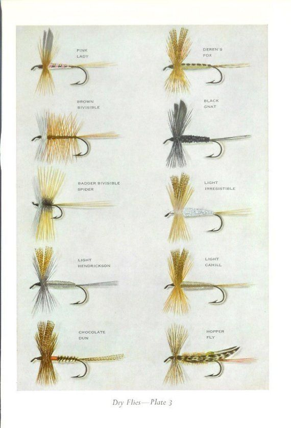 1968 Fishing Print Dry Flies Plates 3 and 4 Vintage by Holcroft
