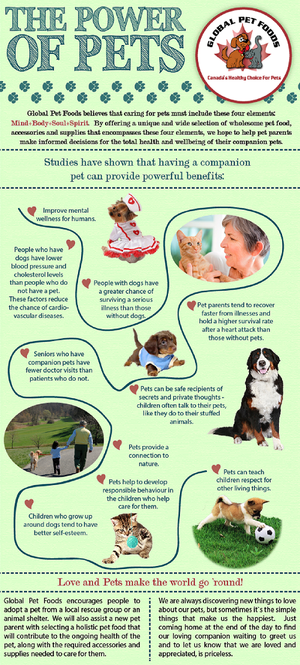 How Are Your Pet Benefitted You And Your Life Powerofpets Pet