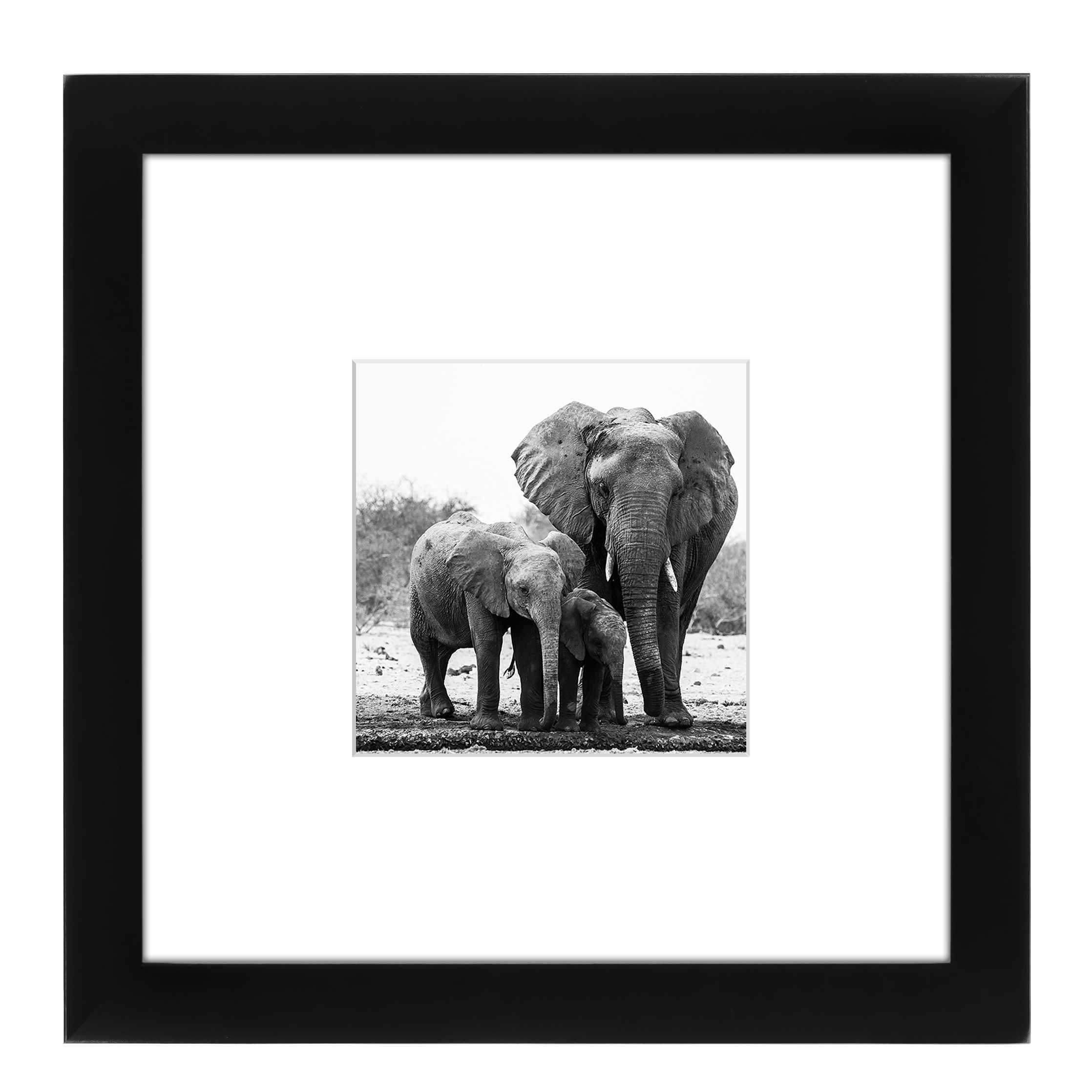 Americanflat 8 x 8-inch Black Picture Frame for 4 x 4-inch Pictures ...