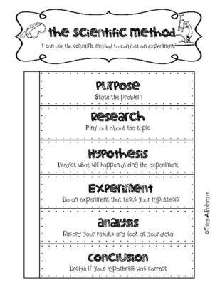 Freebie Interactive Notebook foldable Scientific Method for ANY - scientific method worksheet
