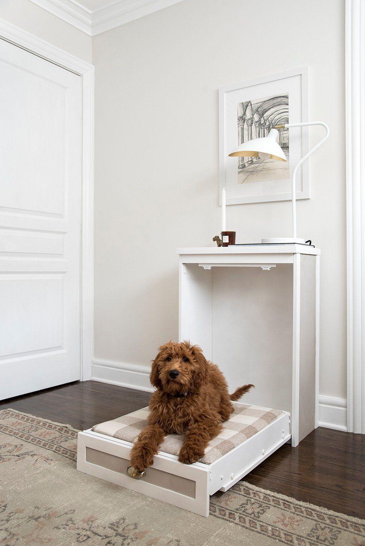 Easy Murphy Dog Bed DIY Room for Tuesday Blog Diy dog