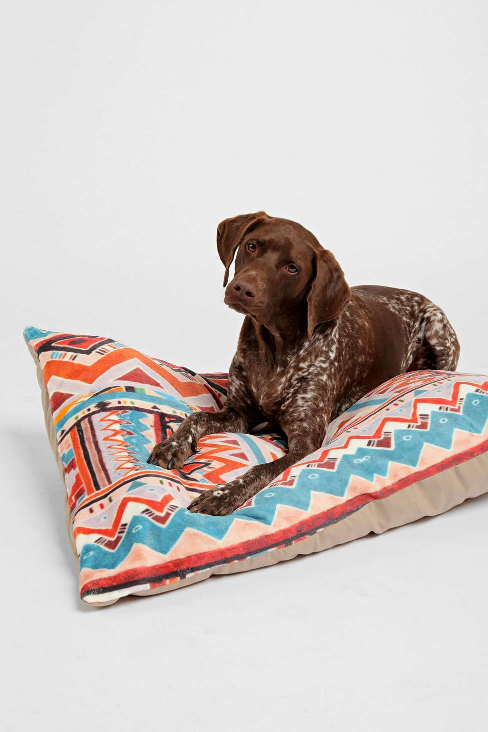 Kris Tate For DENY Cactus 1 Pet Bed Urban Outfitters
