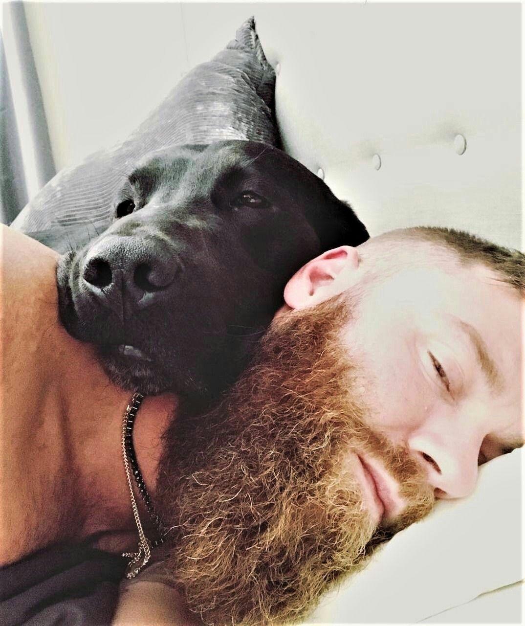 It S A Beard Dog Man And Dog Beard