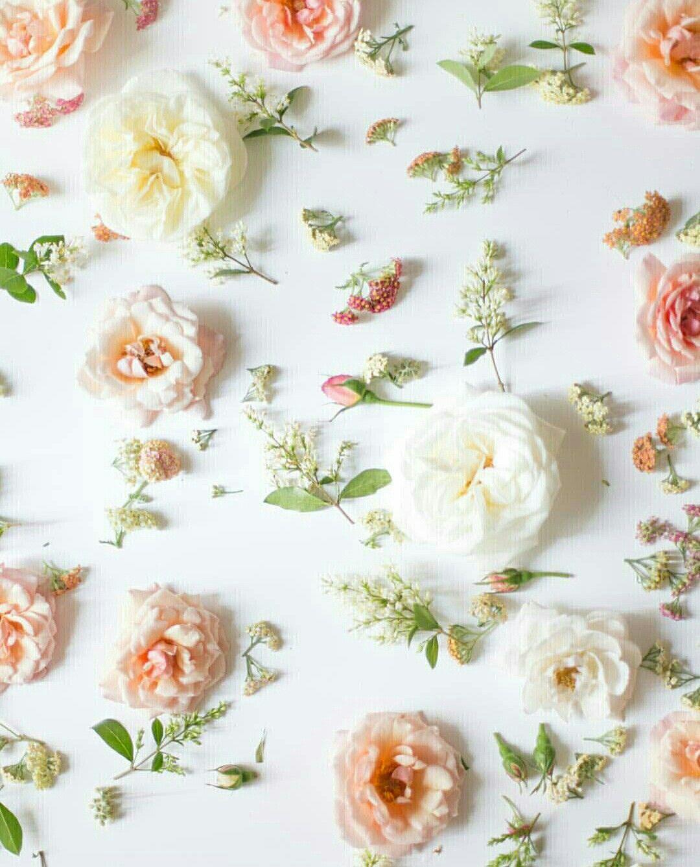 Floral おしゃれまとめの人気アイデア Pinterest Kathryn Conitz