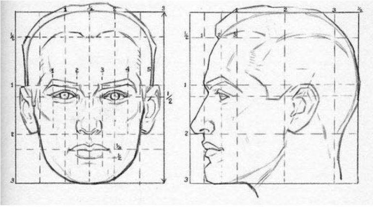 Rostro Humano Como Dibujar Un Hombre Facil Paso A Paso Como Aprender A Dibujar Rostros Humanos Paso A Paso Guia Unica