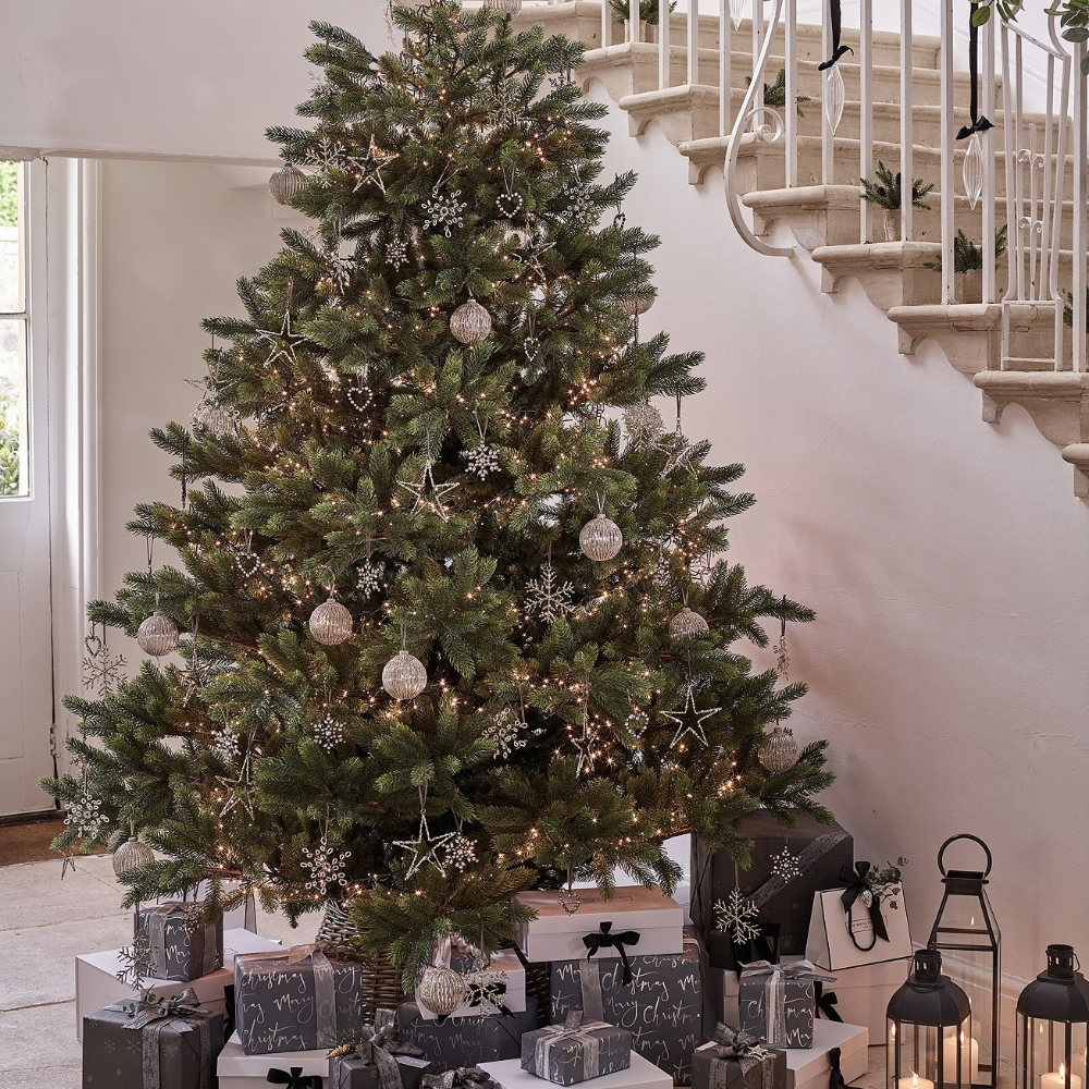 Symons Nordmann Christmas Tree 9ft Christmas Trees The White Company Uk 9ft Christmas Tree Christmas Tree Tree