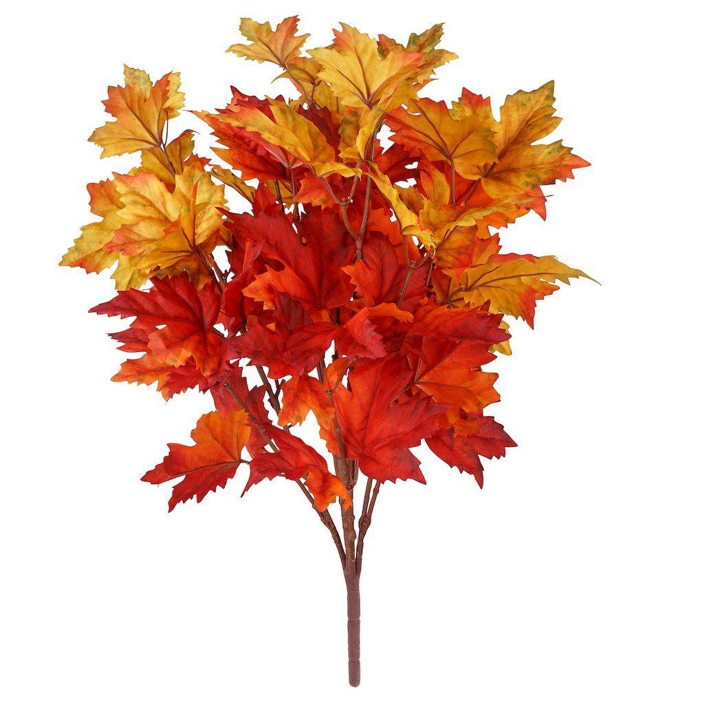 Yellow Amp Red Maple Leaf Bush By Ashland
