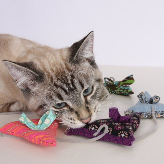 Mouse shaped cat toy Catnip Toy for Cats catniptoys