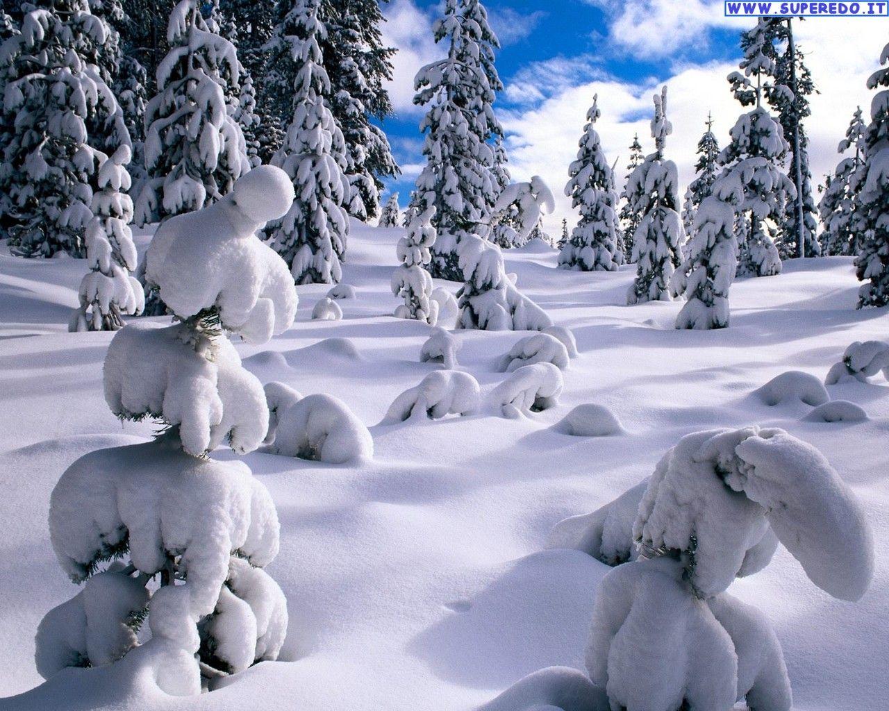Inverno Sfondi Desktop Inverno 104 In Alta Definizione Hd