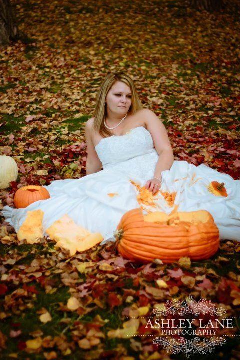 Pumpkin anyone?!