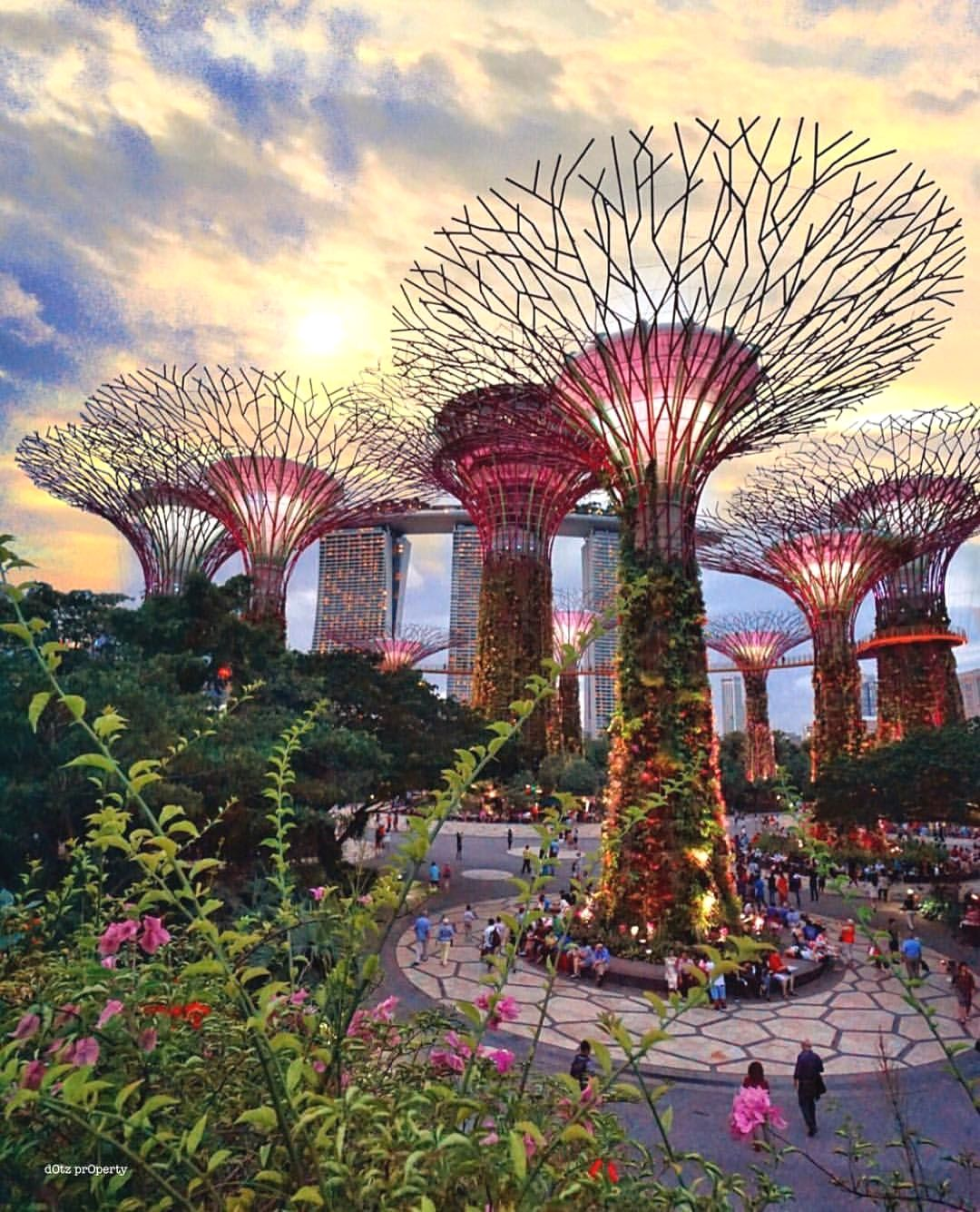 Garden By The Bay Singapore Lovely Shot By Dotzsoh Good Night World Gardens By The Bay Good Night World Singapore