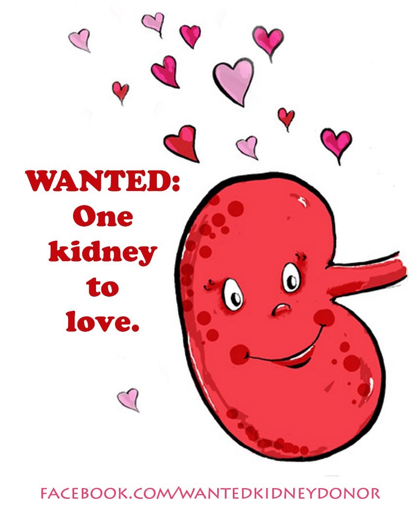 Wanted: One Kidney To Love (for Jenna) facebook com