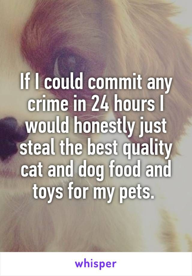 If I could commit any crime in 24 hours I would honestly just steal the best quality cat and dog food and toys for my pets.