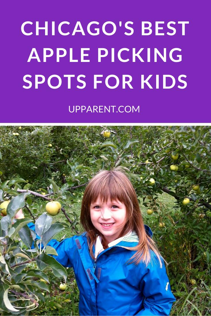 Best Apple Picking near Chicago in 2020 Apple picking