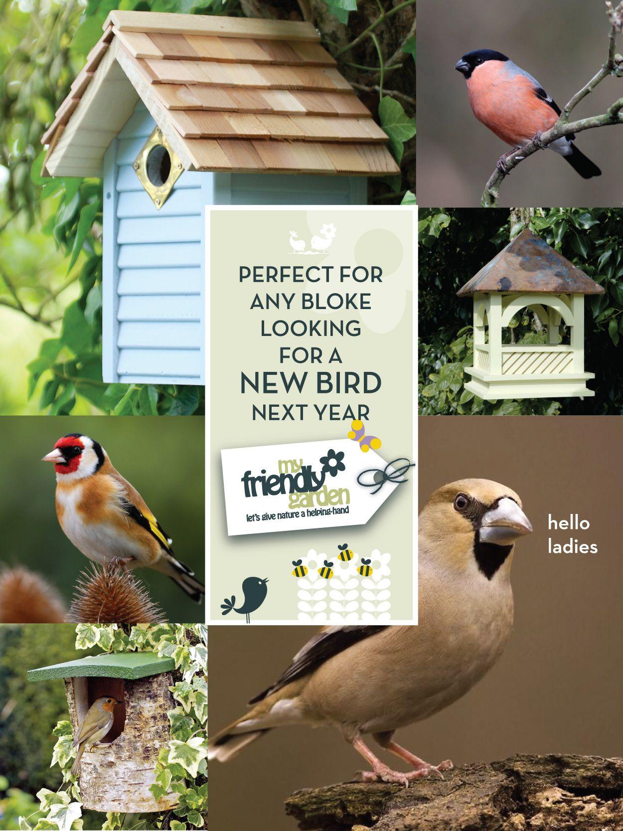 Birdwatching dating sites