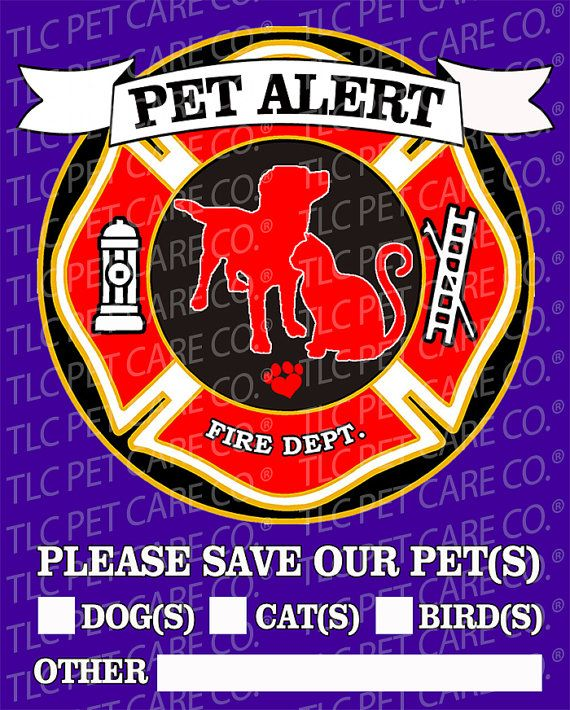 Fabulous Pet Fire Emergency Home Alone Safety Alert Rescue Emergency Beutiful Home Inspiration Aditmahrainfo