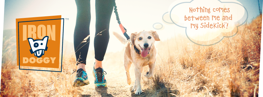 Iron Doggy's newest hands-free leash for runners who like to train side by side with their dogs.