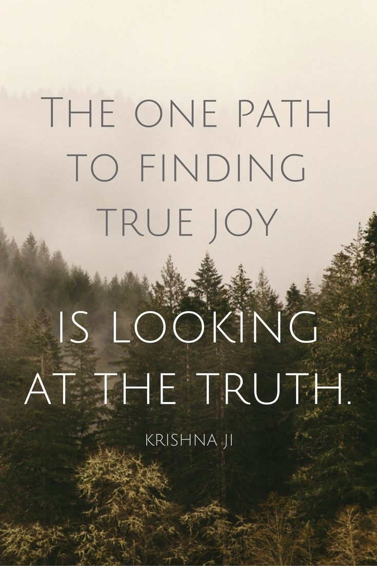 """""""The one path to finding true joy is looking at the truth."""" - Meditation Master Krishna ji on the School of Greatness podcast"""