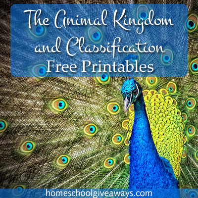 the animal kingdom and classification free printables free resources for homeschoolers. Black Bedroom Furniture Sets. Home Design Ideas