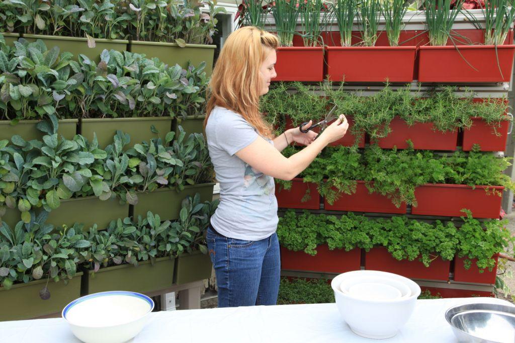 Image of: Vertical Herb Garden Planters Ideas