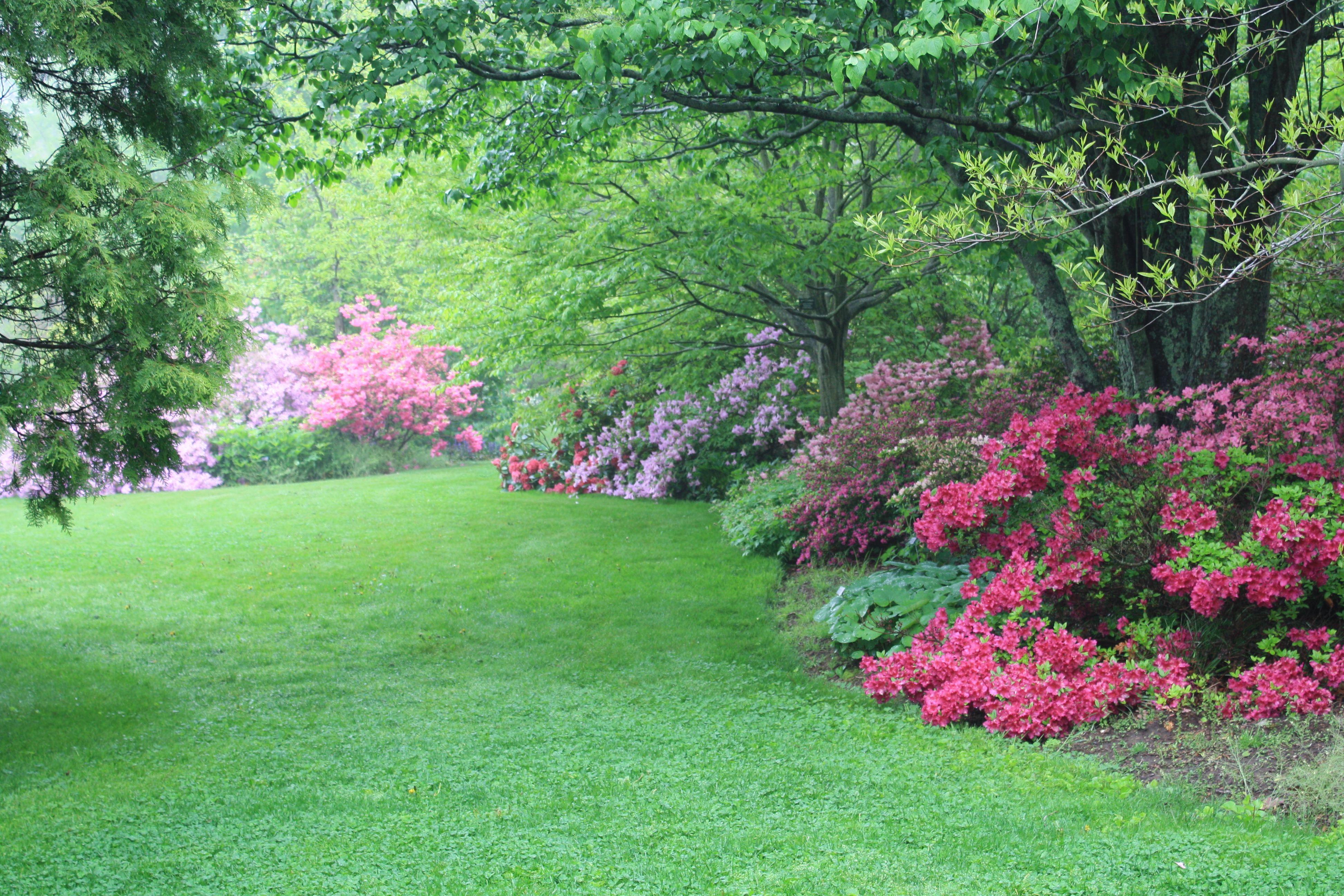 Powers Cultivates Sense Of Community At Backyard Farmer Garden Nebraska Today University Of Nebraska Lincoln