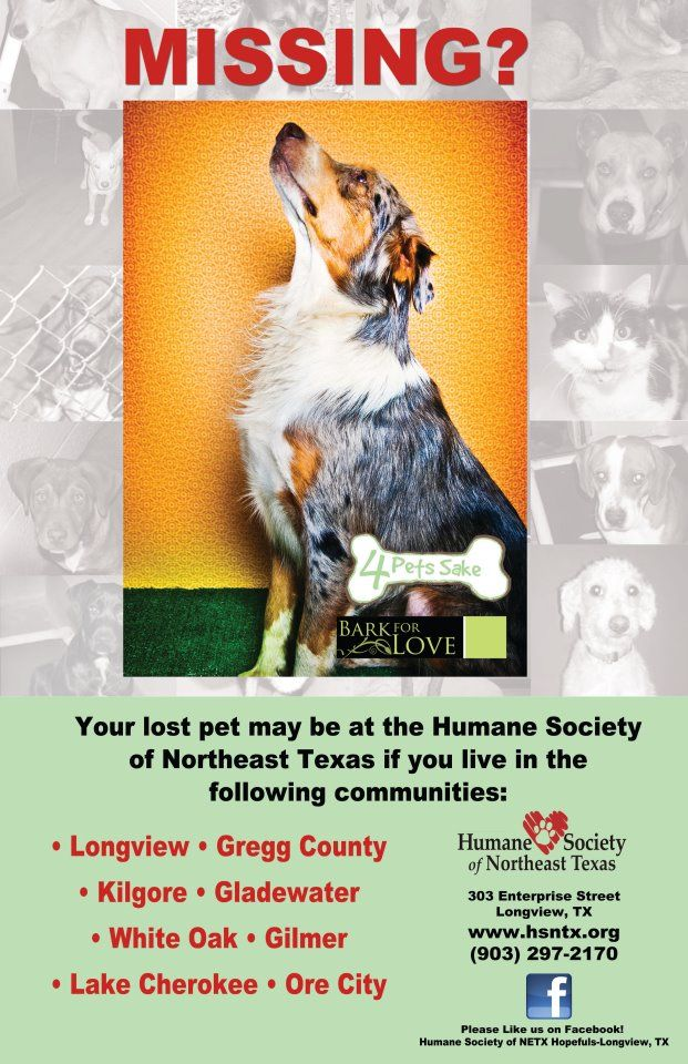 NE TEXAS ~~ YOUR LOST PET may be at the HUMANE SOCIETY OF NE TEXAS - lost pet poster