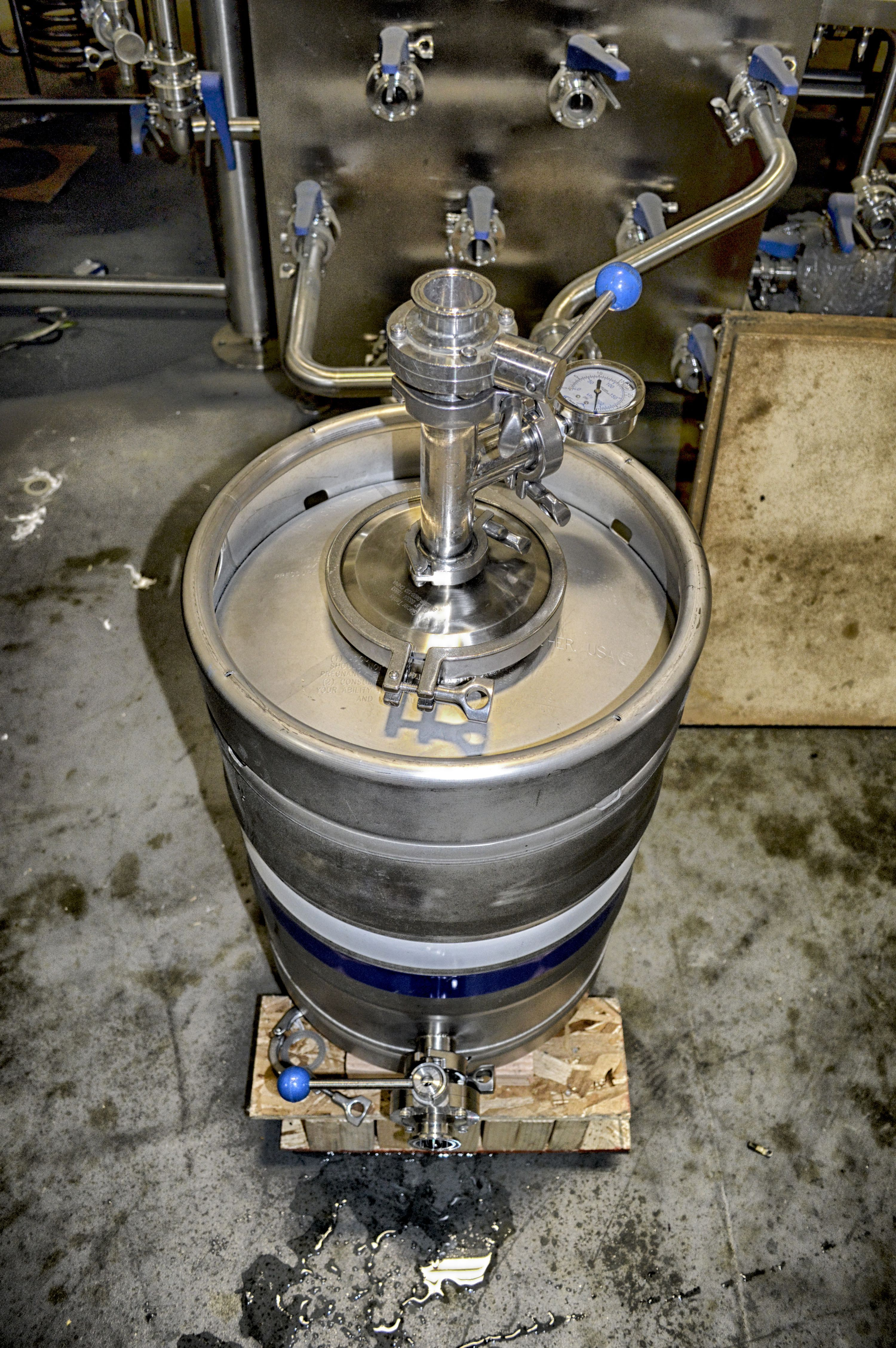 Keg Yeast Brink #Yeastbrink #homebrew #brewing #keg #keggle ...