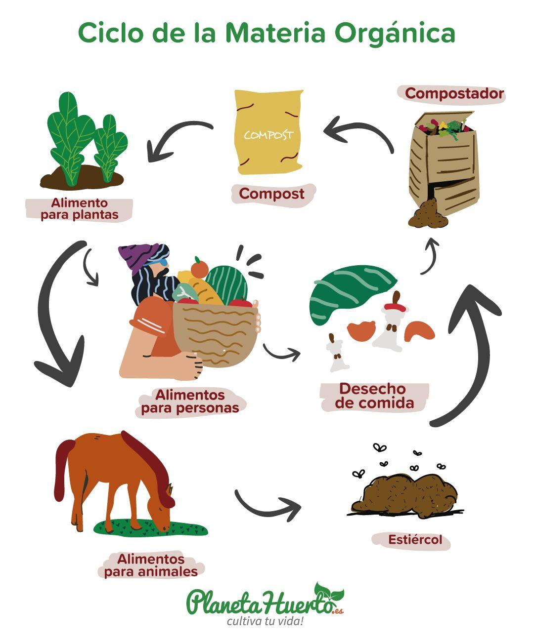 Ciclo De La Materia Organica Compost Jardin De Vegetales Lombricultura