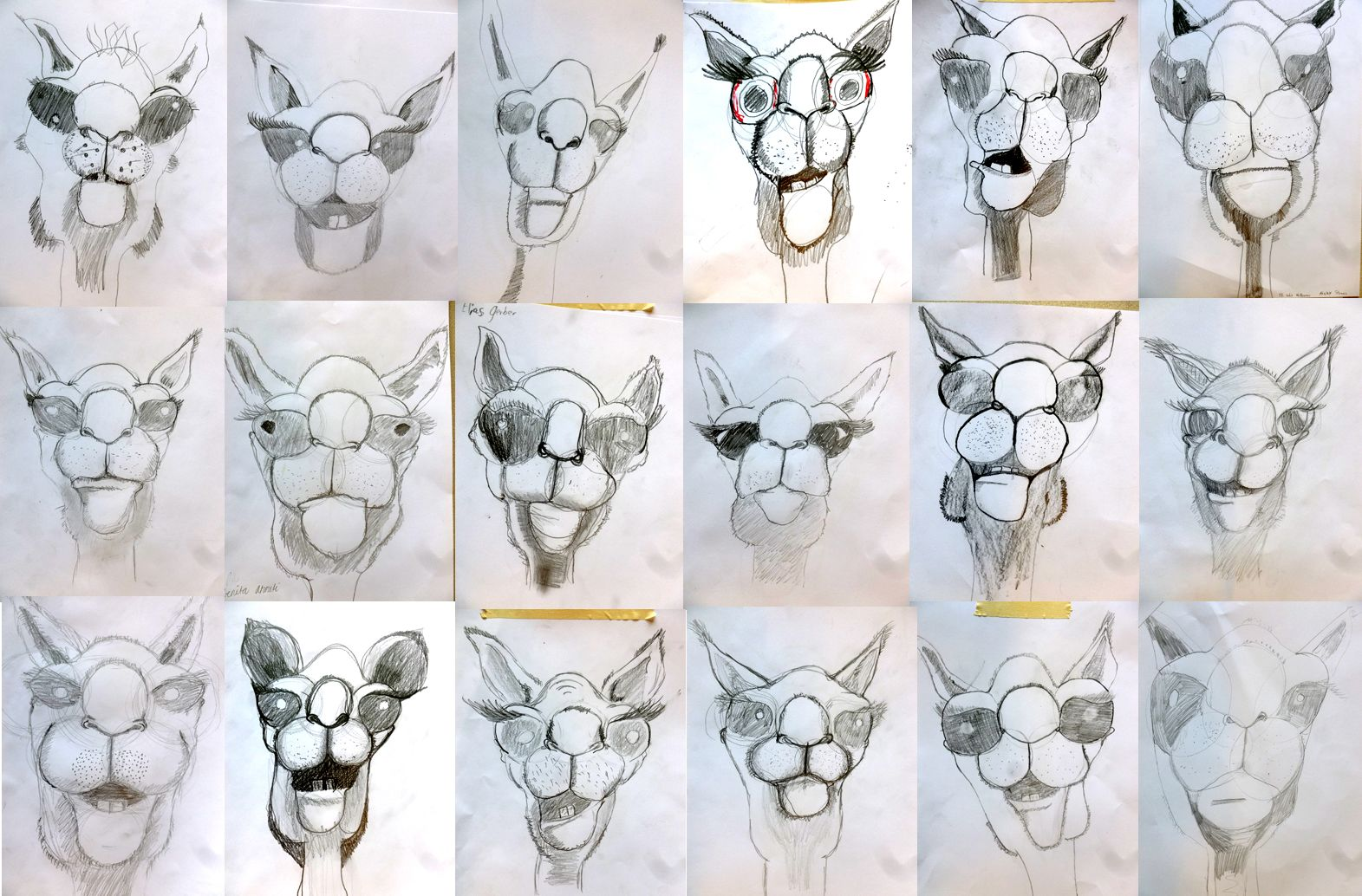 T tes de chameau dessiner et peindre pinterest - Dessiner un chameau ...