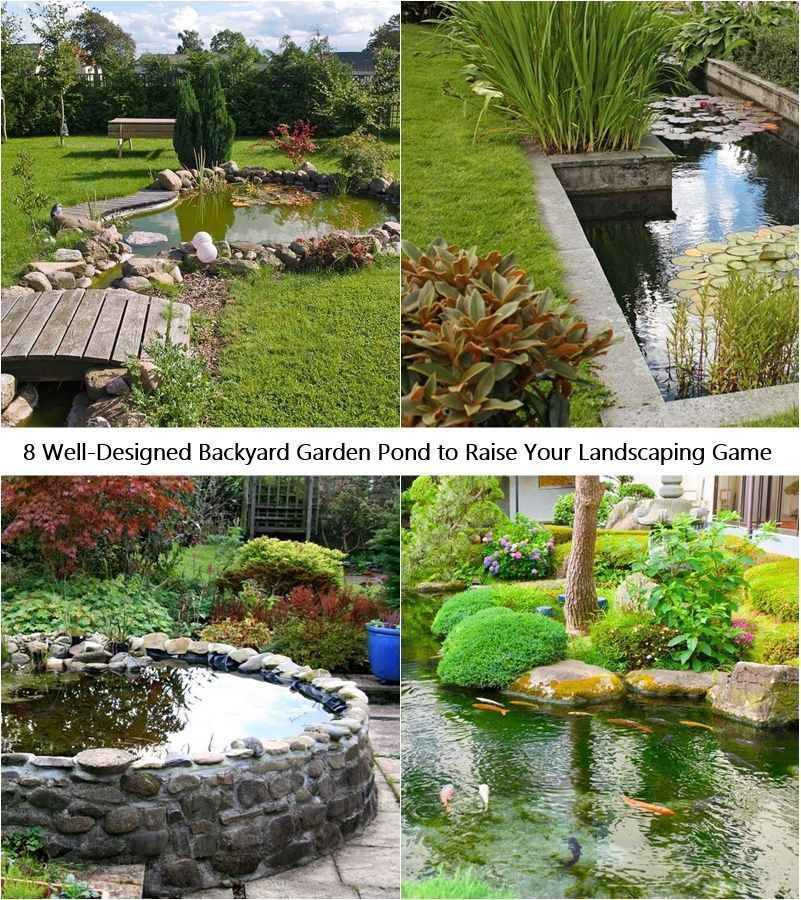 8 Well Designed Backyard Garden Pond To Raise Your Landscaping